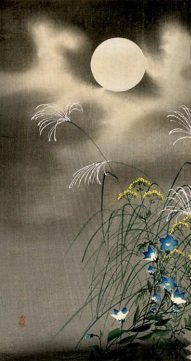moon-and-blue-flowers